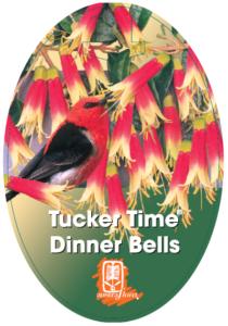 Correa Dinner Bells