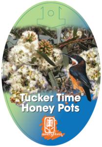 Eucalyptus Honey Pots