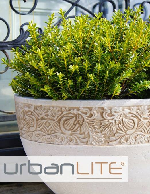 Melissa King Talks About UrbanLITE Pots!