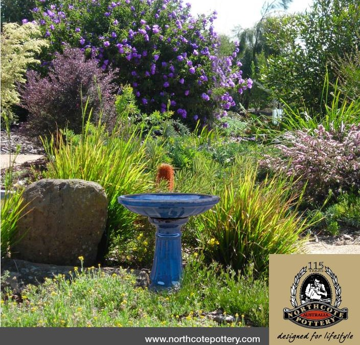 Australian Bird Baths