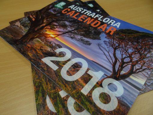 2018 AF Calendar
