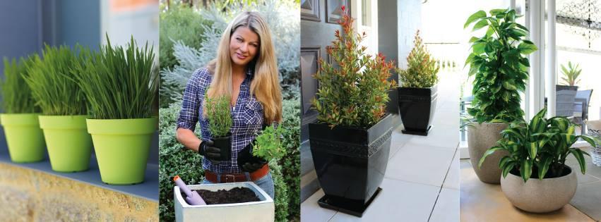 Melissa King Shares Decorating Tips