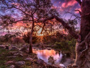 """Perth Hills WA"" by David Ashley"