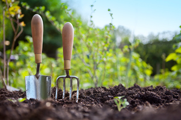 Gardening Jobs Before Springtime