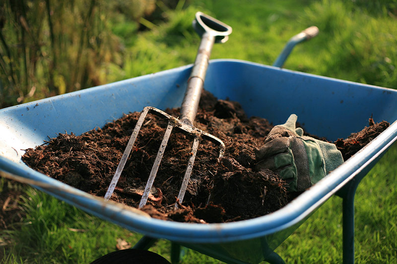 Preparing Your Native Soil For Spring