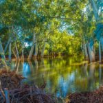 """Alma River in Gascoyne WA"" by Jason Slade"