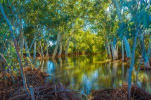 """""""Alma River in Gascoyne WA"""" by Jason Slade"""