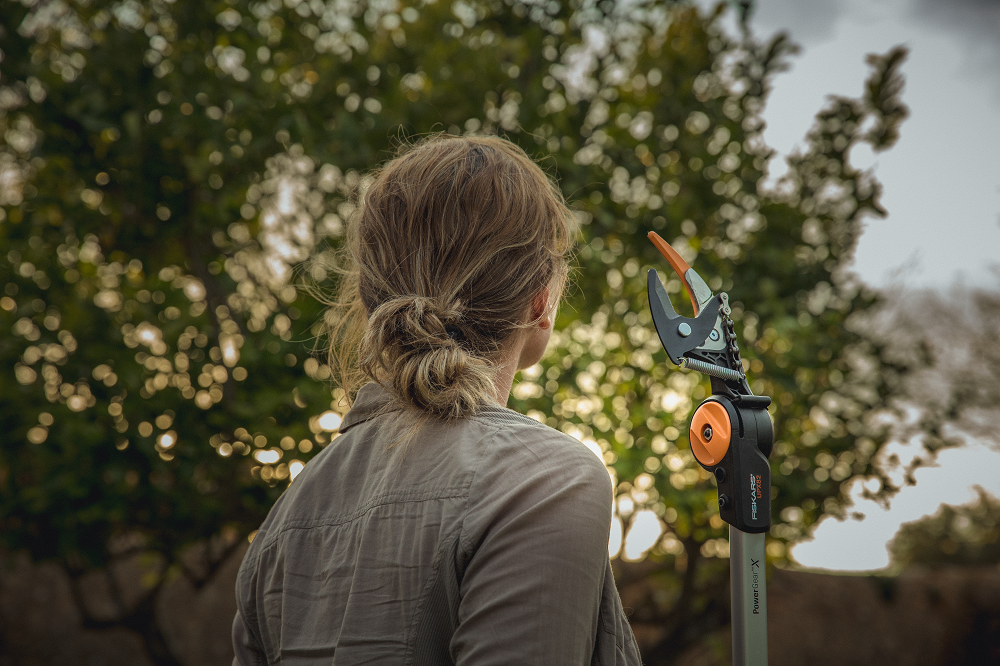 Reaching New Heights With Fiskars
