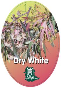 Eucalyptus Dry White