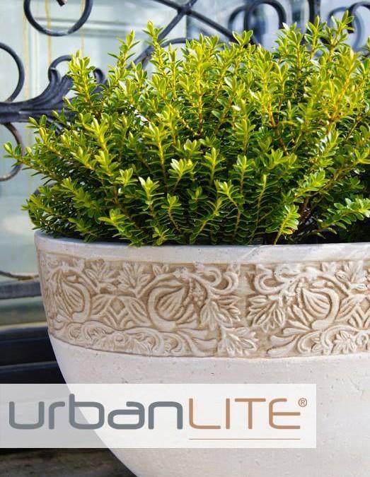 Melissa King Talks About UrbanLITE Pots!
