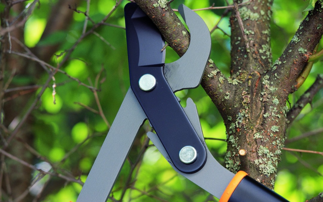 PowerGear Tools For Super Gardeners!